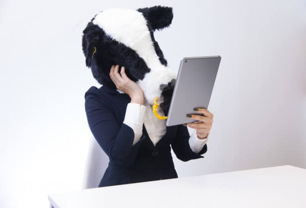 自分の姿にうっとりするエト牛