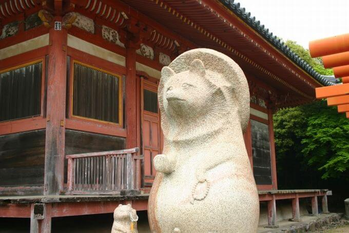 屋島寺の太三郎狸